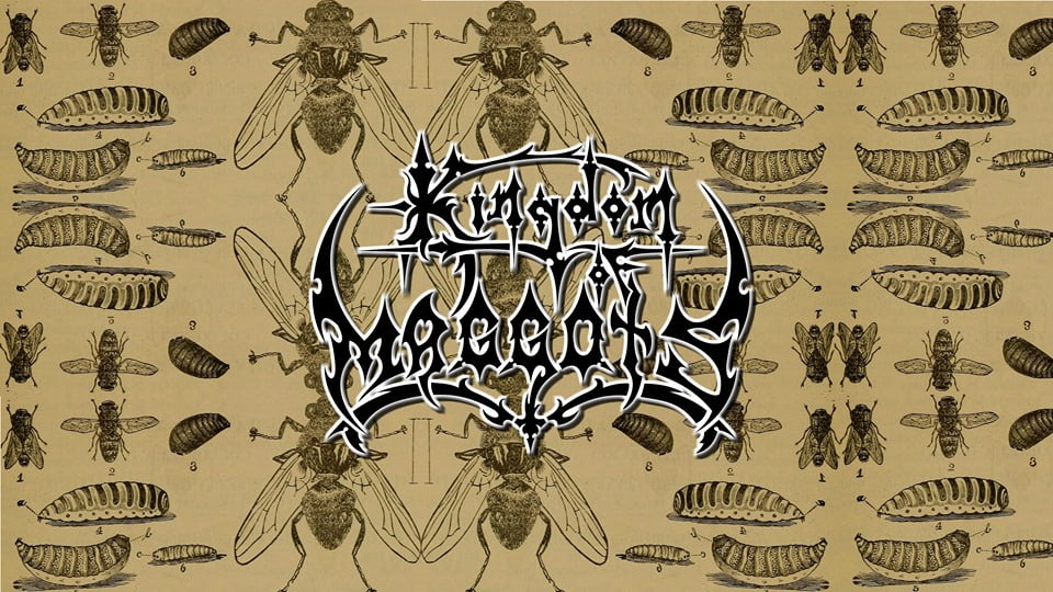 Read more about the article Kingdom of Maggots divulga lyric video